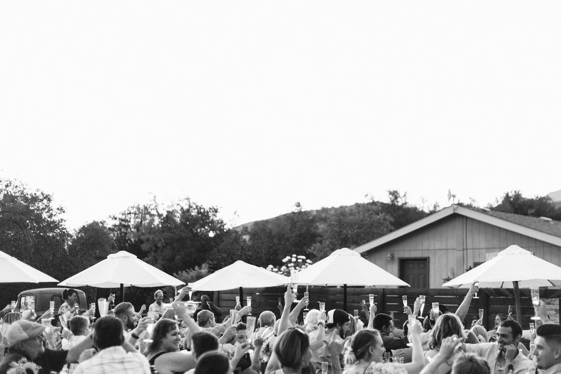 Champagne toast at rustic chic Summer wedding reception in Ojai, California, shot by Alison Photography.
